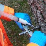 Más de mil pinos carrasco distribuidos por toda la ciudad serán tratados mediante endoterapia para reducir la procesionaria