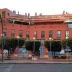 Novedosa iniciativa: Alcalá extraerá 14 árboles de la Vía Complutense por las obras, pero los volverá a replantar en septiembre