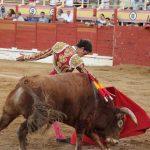 Sigüenza recupera los festejos taurinos el 14 de agosto con una novillada mixta en la que participarán Víctor Hernández y Alejandro Peñaranda y el rejoneador José María Martín