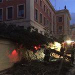 La borrasca 'Gloria' deja en la ciudad de Guadalajara un total de 22 actuaciones sobre árboles y casas pero ningún herido