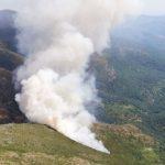 Un incendio forestal afecta al término de El Cardoso de la Sierra, en la Sierra Norte de Guadalajara